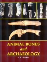 Animal Bones and archaeology