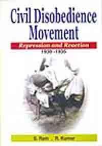 Civil Disobedience Movement: Repression and Reacti…