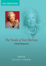 The Novels of Toni Morrison: Critical Perspectives