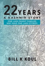22 Years: A Kashmir Story Paperback