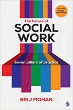 The Future of Social Work: Seven Pillars of Practi…
