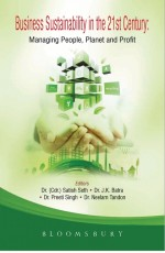 Business Sustainability in the 21st Century: Manag…