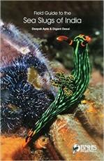 Sea Slugs of India Hardcover