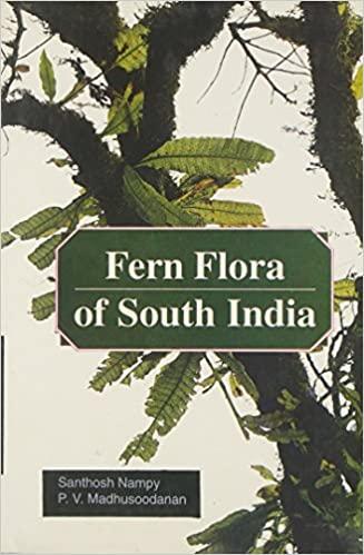 Fern Flora of South India (Hardback)