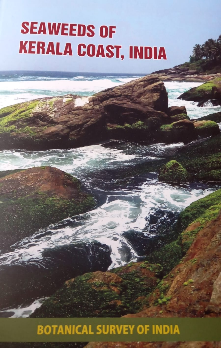 Seaweeds of Kerala Coast, India