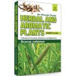 Herbal and Aromatic Plants: Acorus Calamus: Sweet …
