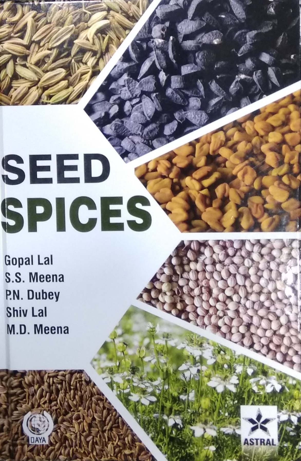 Seed Spices