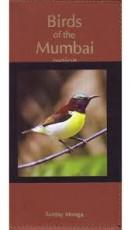 Birds of the Mumbai Region