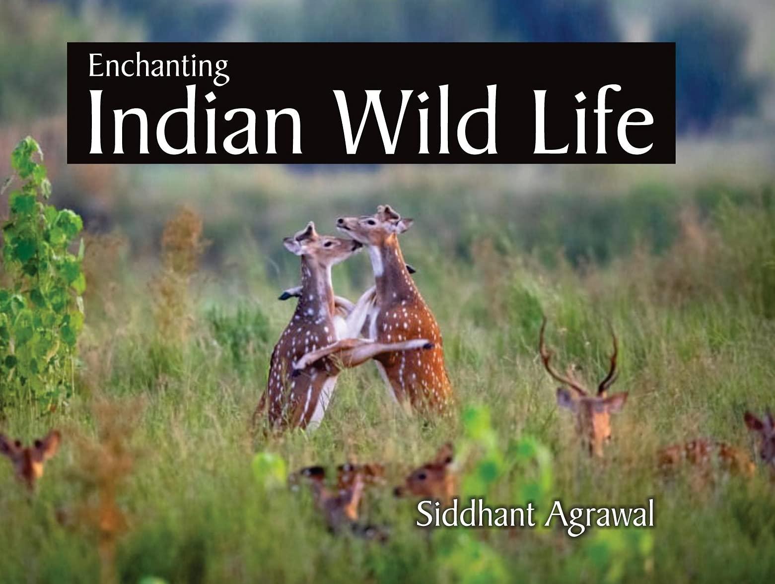 Enchanting Indian Wild Life