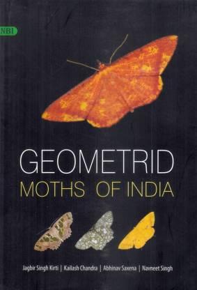 Geometrid Moths of India (Hardback)