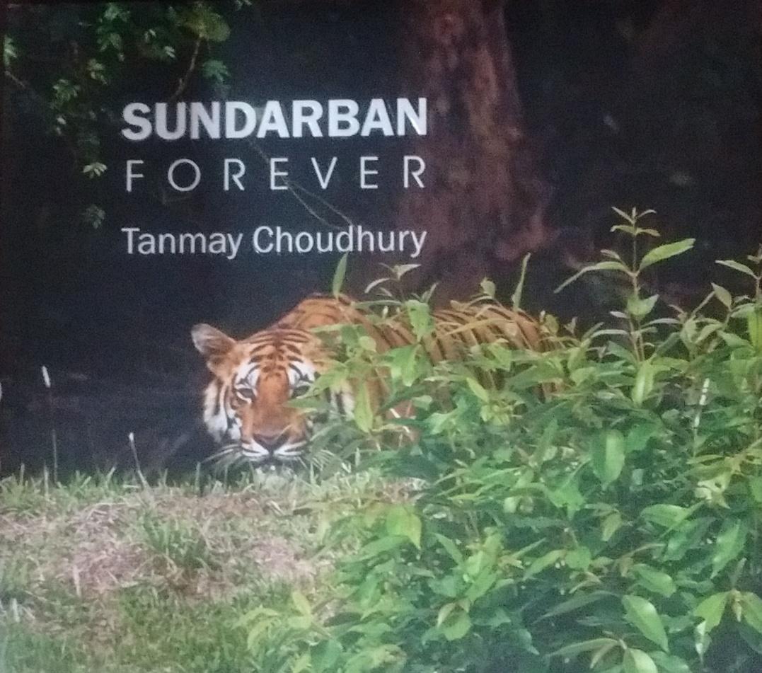 Sundarban Forever