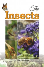 The Insects