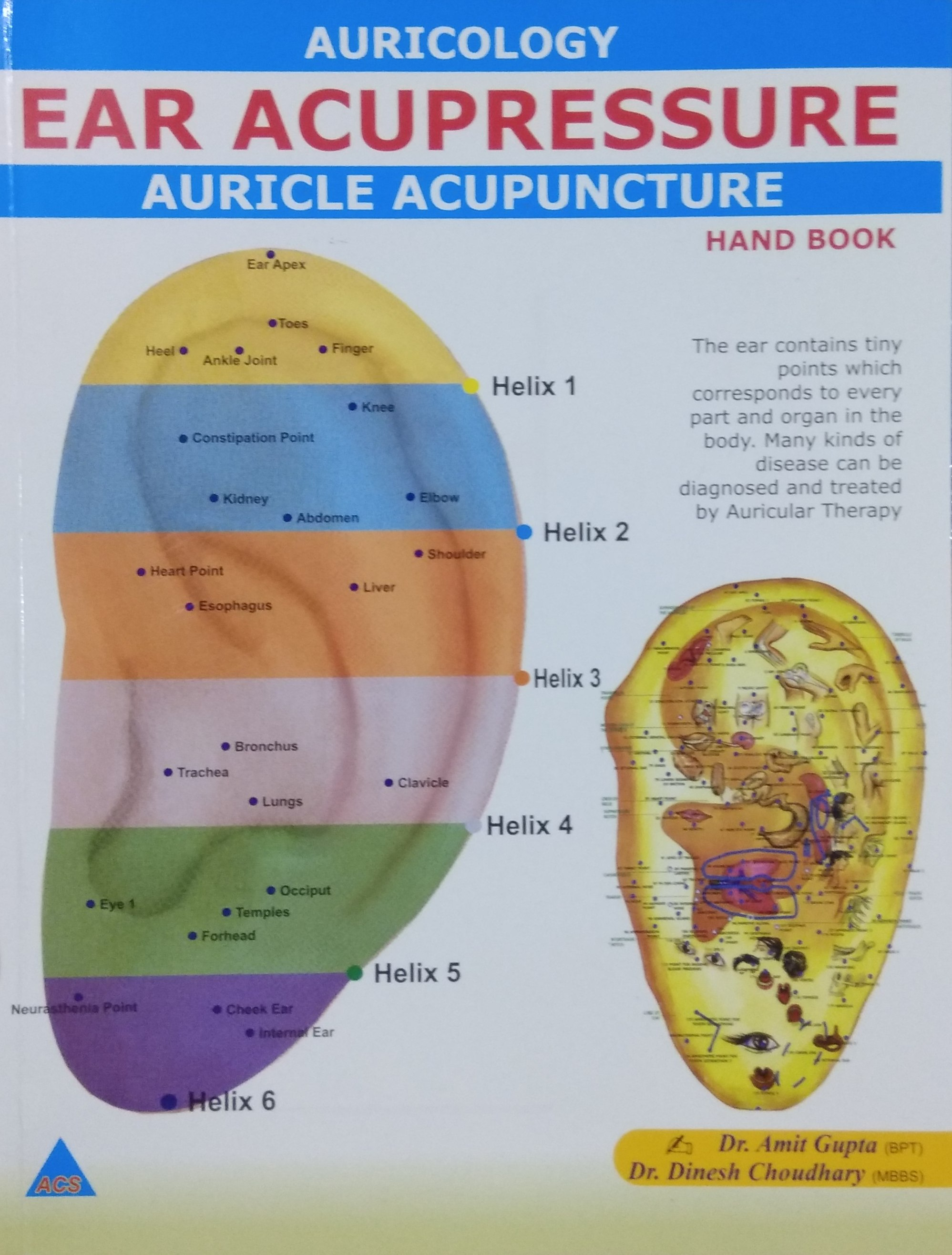 Ear Acupressure: Auricle Acupunture Hand Book (Rs …