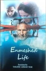 Enmeshed Life: A Novella originally written in Kas…