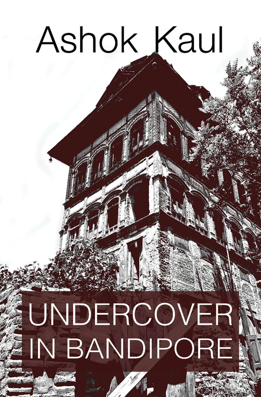 Undercover in Bandipore (Paperback)