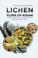 Lichen Flora of Assam