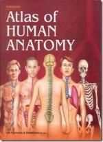 Asklepios Atlas Of Human Anatomy 95th Edition)