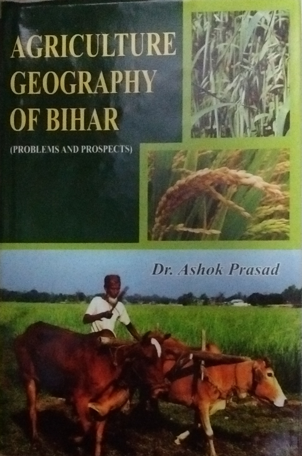 Agriculture Geography of Bihar (Problems and Prosp…